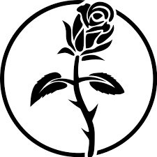 rosaleen@anticapitalist.party